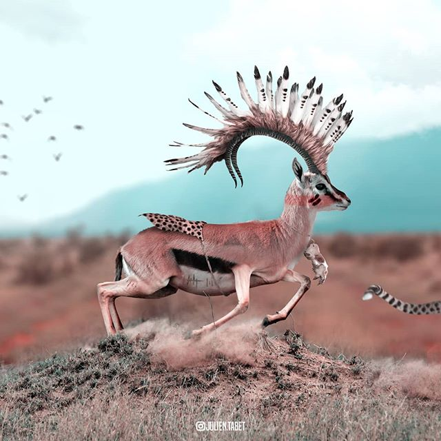 clever-digital-photo-manipulations-by-julien-tabet-22