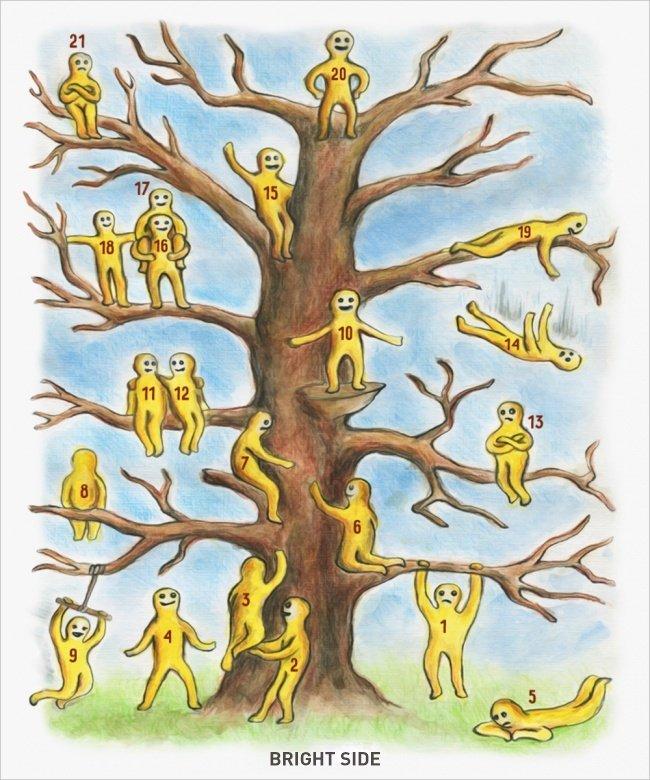 TEST. Tree