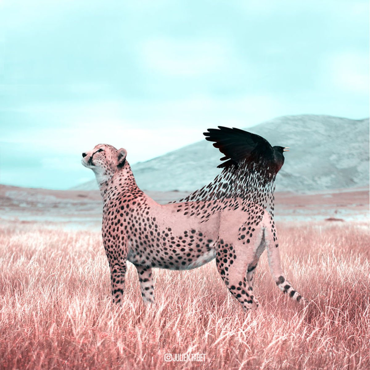 French Artist Creates The Most Surreal Animal Images Using Photoshop