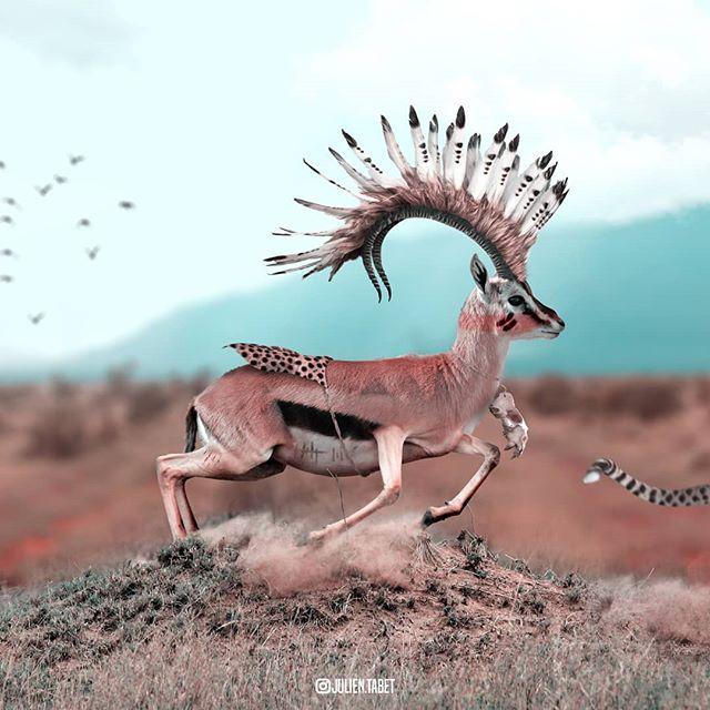Сюрреализм: 15 необычных животных, созданных фотохудожником