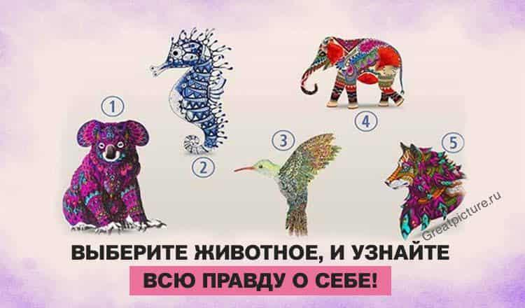 Тест: Выберите животное и узнайте всю правду о себе!
