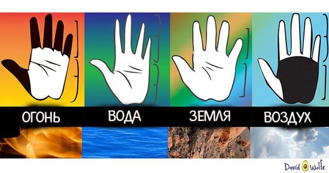 Удивительно, что форма вашей руки может рассказать о вашей личности!