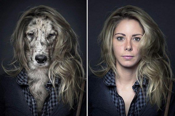 They Say Dogs Reflect Their Owners' Characteristics. These Photos Prove This