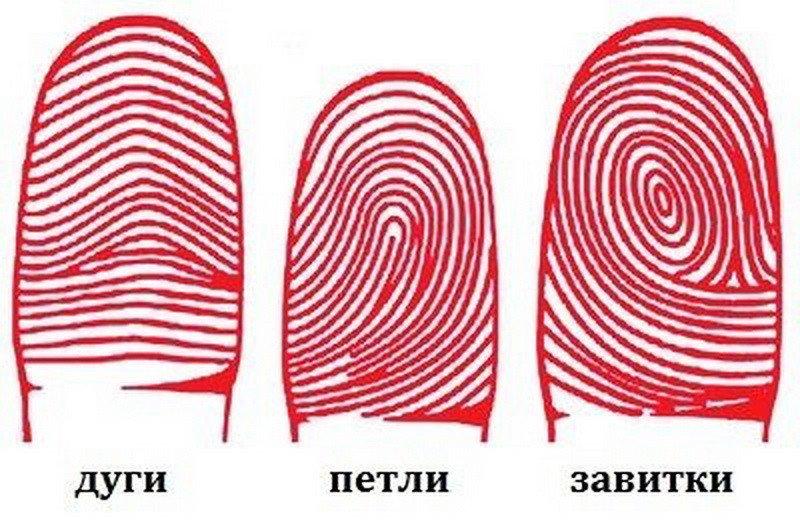 Дактилоскопия и характер. Что поведают ваши пальчики?
