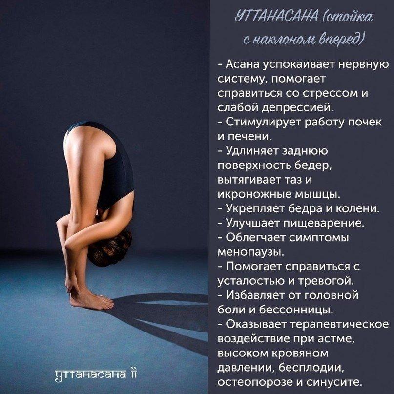 Несложные позы йоги, которые точно помогут вам укрепить здоровье!
