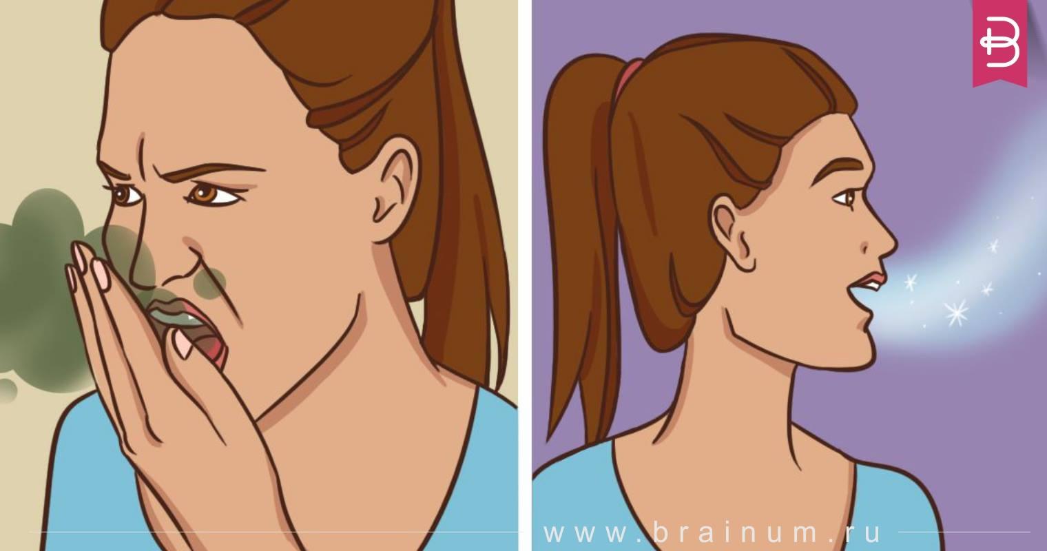 Натуральные и безвредные методы для свежего дыхания
