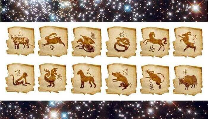 Самые везучие знаки восточного гороскопа