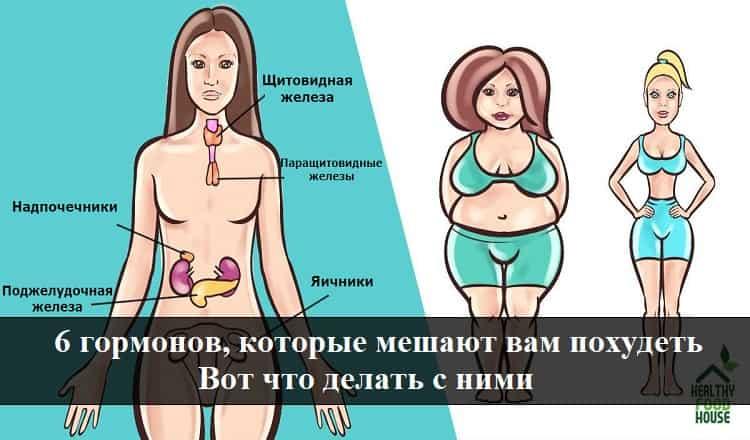 6 гормонов, которые мешают вам похудеть.Вот что делать с ними