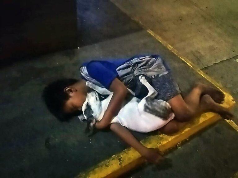 Снимок мальчика, спящего в обнимку с собакой на бетоне содрогнуло мир