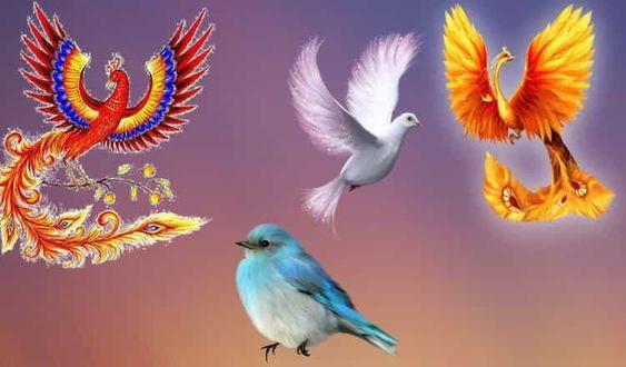 Птица Счастья поведает, какой подарок Судьбы ожидает человека в будущем