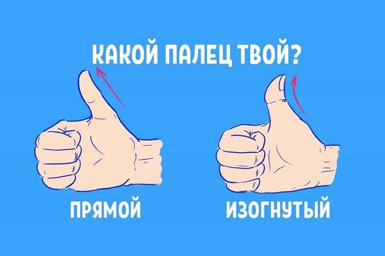 Угол изгиба большого пальца расскажет всё о вашем характере