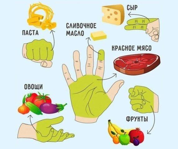 Сколько нужно есть, вам покажет ваша рука. Основные принципы «ручной диеты»