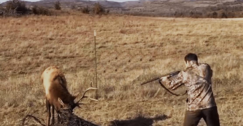 Этот парень направил ружье на оленя! Но что произошло в следующее мгновенье, повергнет вас в шок!