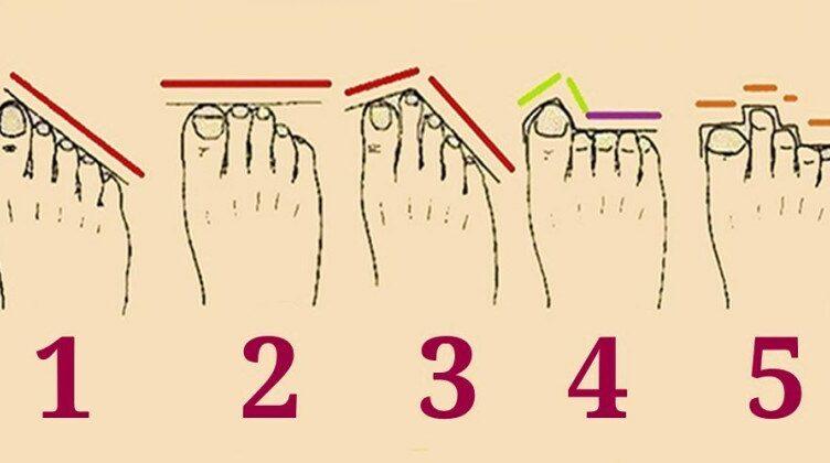 Талантливы или масса амбиций: что форма пальцев на ногах расскажет о вашем характере